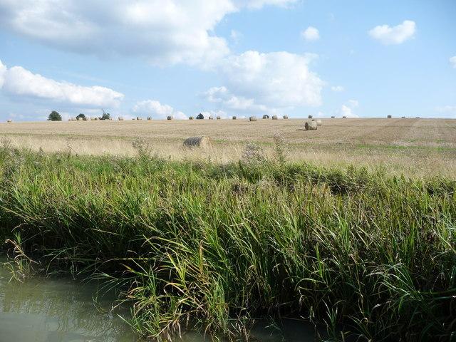Farmland east of Yelvertoft Fieldside Covert