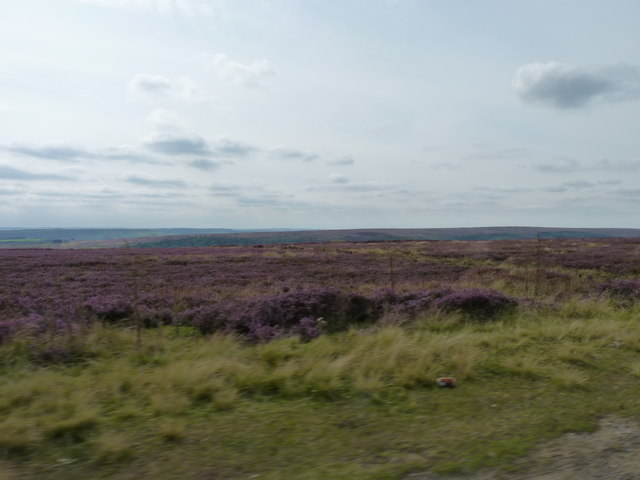 Yorkshire Dales moorland