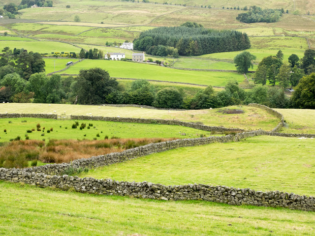 Slope with fields descending towards River South Tyne
