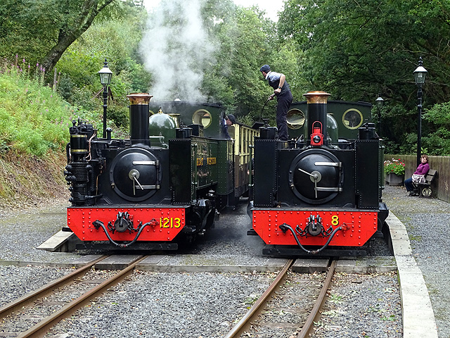 An unusual view of Nos. 8 and 1213 together at Aberffrwd, Vale of Rheidol Railway