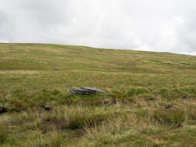 Slope rising towards Scarberry Hill