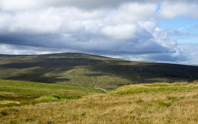 Grassy moorland at summit area of Park Fell