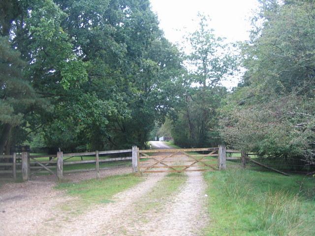 Track towards Ladycross Lodge