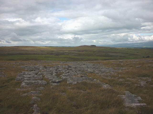 Limestone, Great Asby Scar