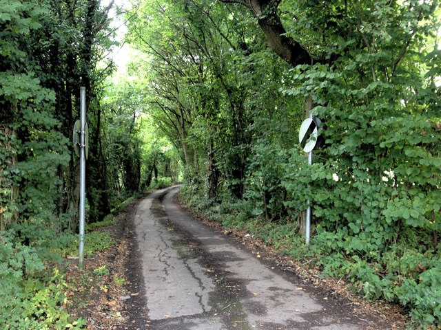 Elmstone Hole Road, Liverton Street