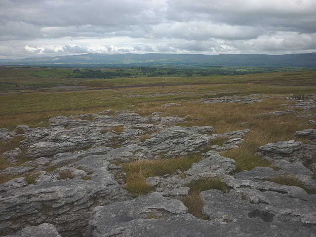Clints and grikes on Asby Scar