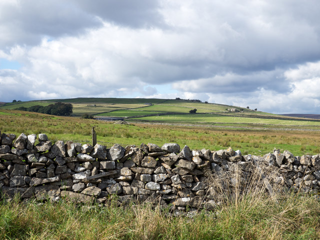Rough grazing beyond dry stone wall