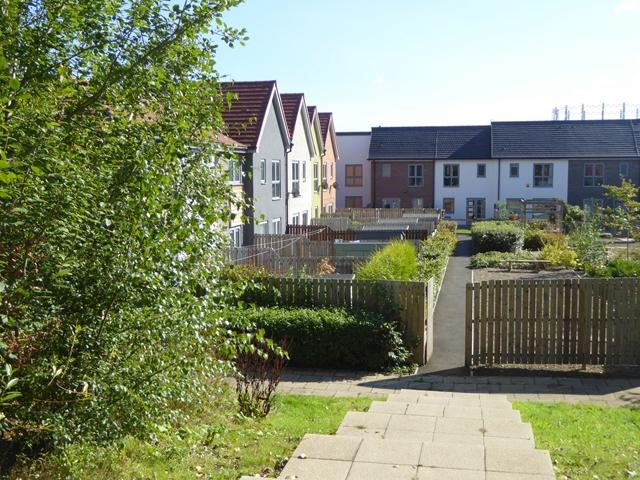 Gardens and houses on Michaelmas Street