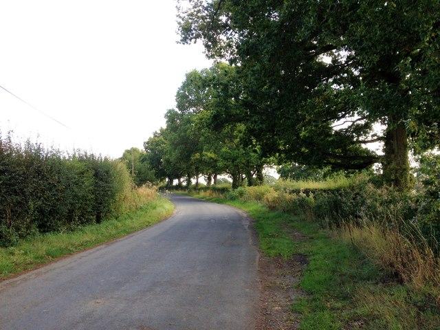 Southernden Road, near Headcorn
