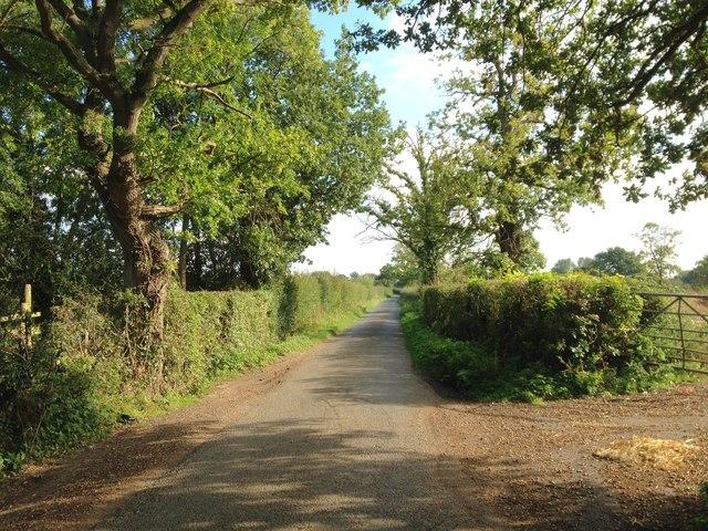 Baker Lane, near Headcorn