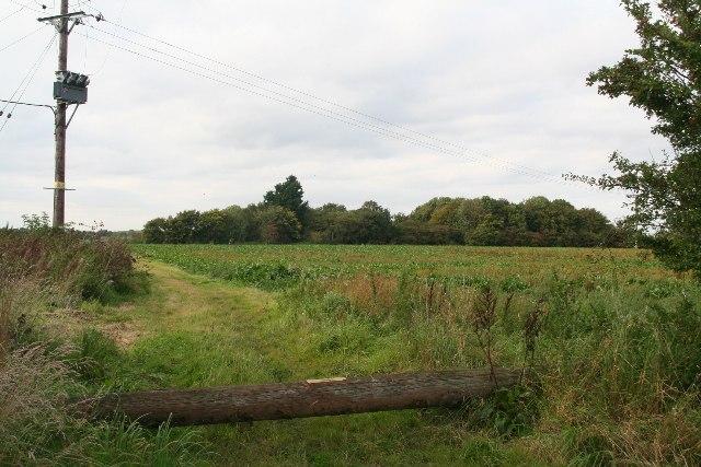 Field by Holmes Road, Horsington Holmes