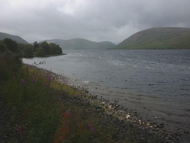 Shore of St Mary's Loch
