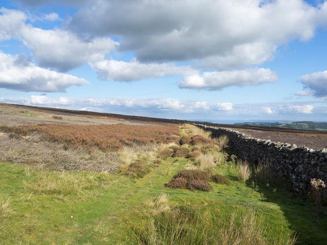 Bridleway on  moorland alongside wall