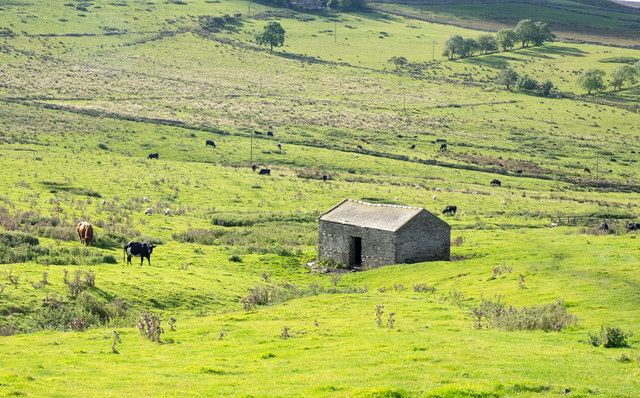 Barn in area of rough grazing