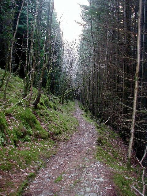 Path into Cwm Rheidol