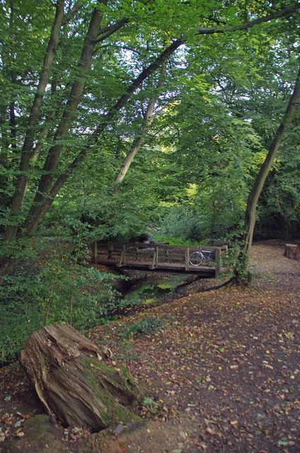 River Ching Bridge in Highams Park