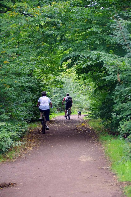 Cyclists On The Holly Trail