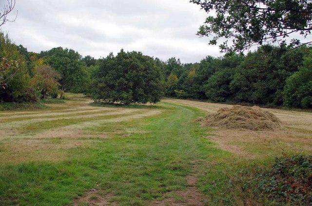 Hay by the London Loop