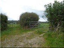 SX5495 : Adjacent field entrances, Southcott  by David Smith