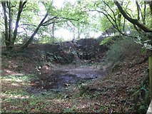 SX5594 : Former quarry by Dry Lane and Hookmoor Brook by David Smith