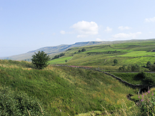 Grassy bank at side of Cote Gill.