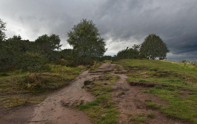 On Thurstaston Hill