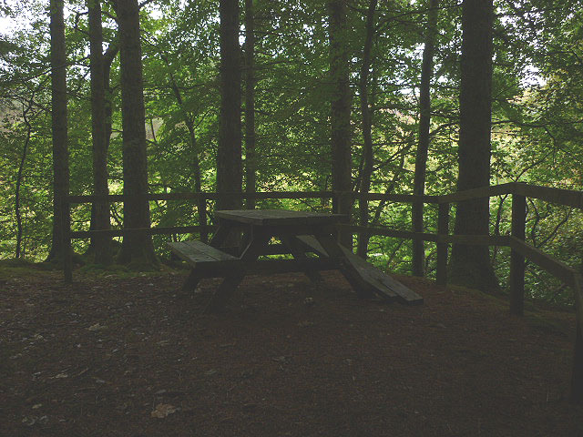 Broken picnic table, Craik