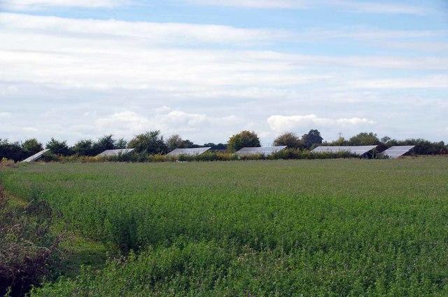 Photovoltaic Panels by Green Lane Farm