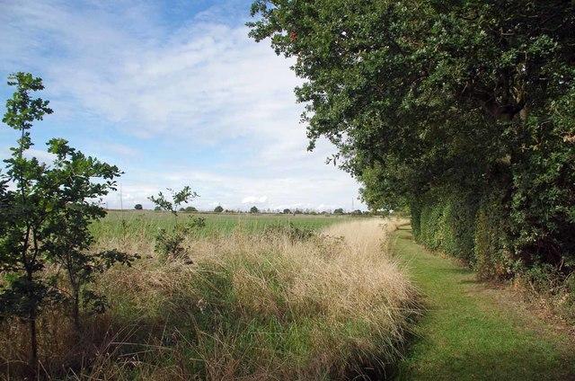 Footpath to Asheldham Grange