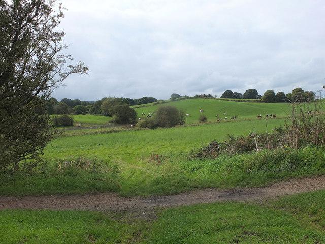 Farmland West of the Leeds - Liverpool Canal at Appley Bridge