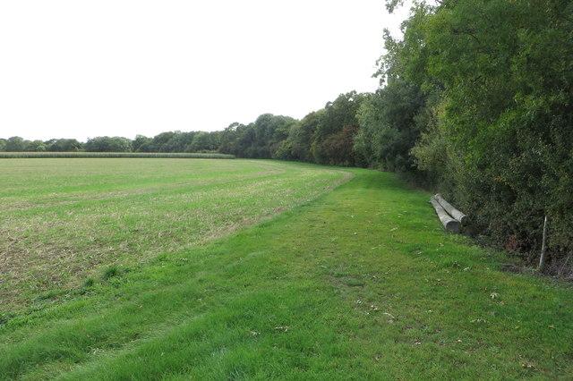 Woodland by Harrold Road