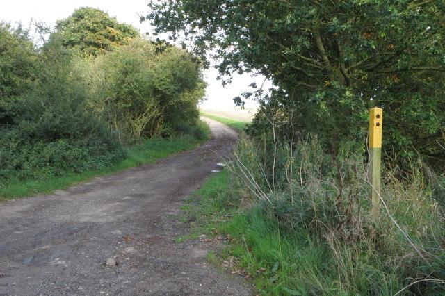 Footpath into Harrold