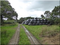 SS5401 : Bales stored north of Medland Farm by David Smith