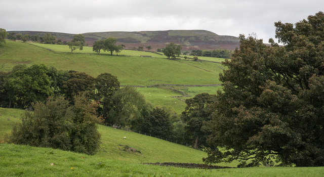 Grassed fields descending to River Swale