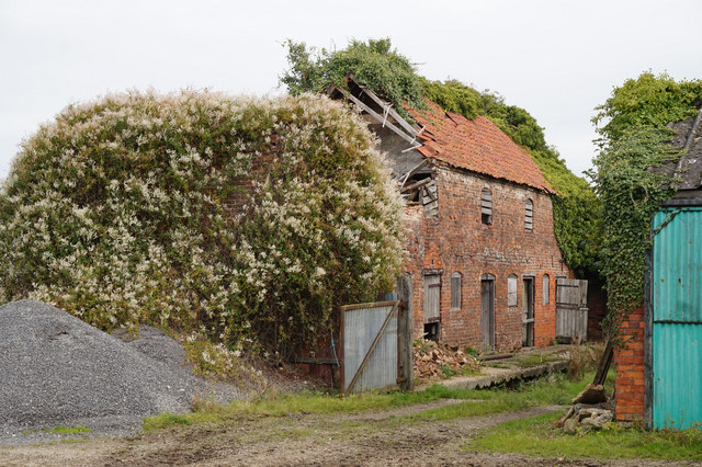 Derelict barn at Mauxhall Farm