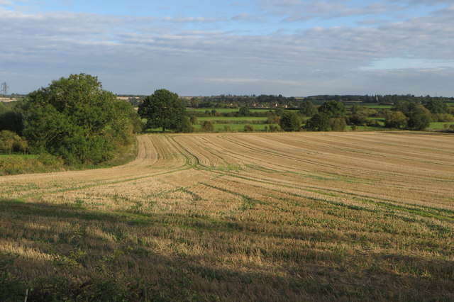 Stubble field and small copse
