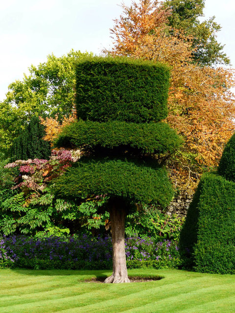 Topiary Levens Hall
