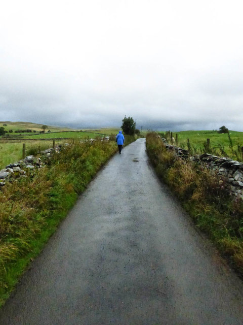 Lane to Badger Hill