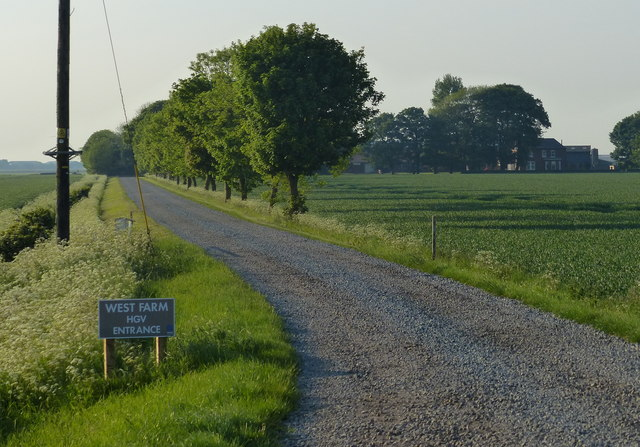 Road to West Farm at Sunk Island