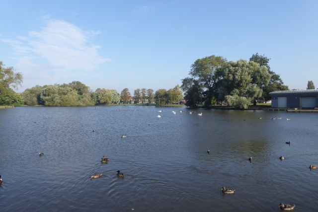 Lake in East Park