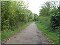 SP9556 : Path at Harrold-Odell Country Park by M J Richardson