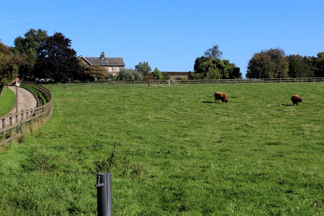 Pasture and Access Lane at Healaugh Grange