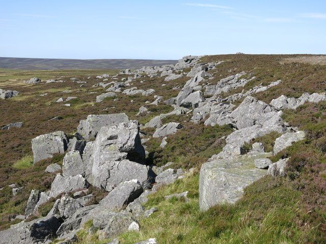 Rock outcrop and Monk's Currick (2)