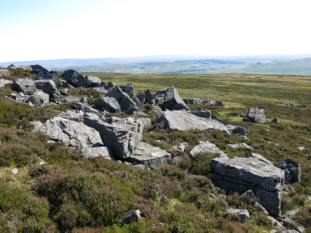 Rock outcrop south of Monk's Currick