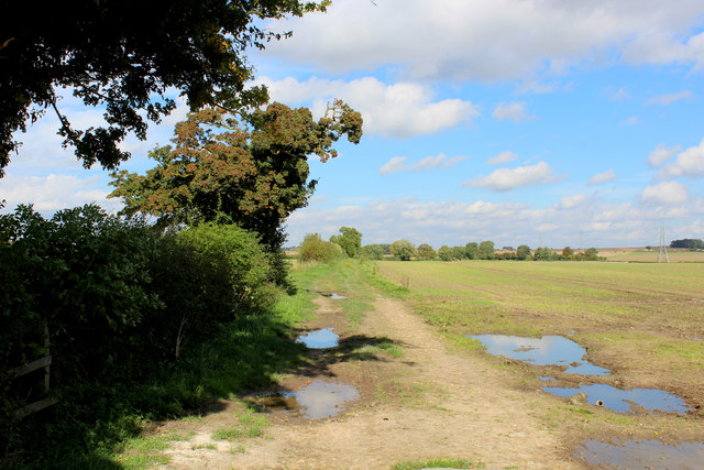 Farm Track leading away from Wighill Lane
