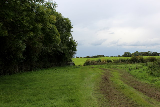 Muddy Track behind Waller House Farm