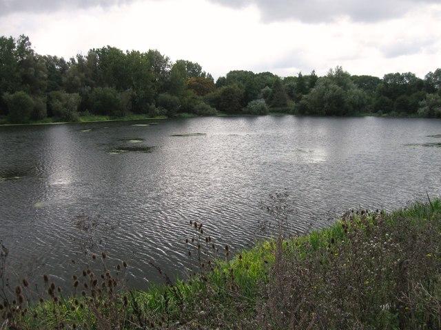 Wildlife lake