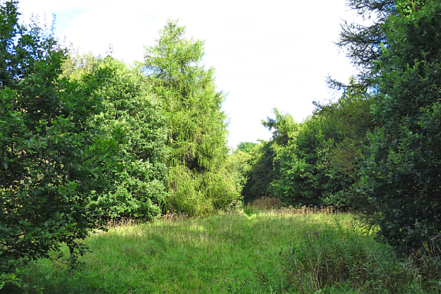 Addiewell Bing Nature Reserve