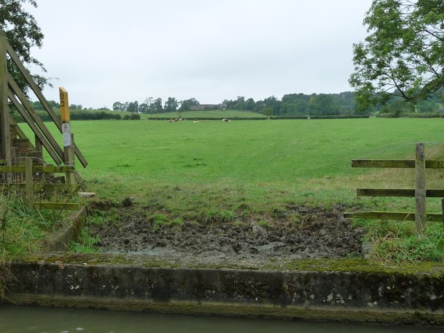 Where cattle come to drink, by Bridge 63