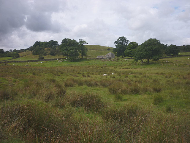 Rough Pasture by Muddy Pool